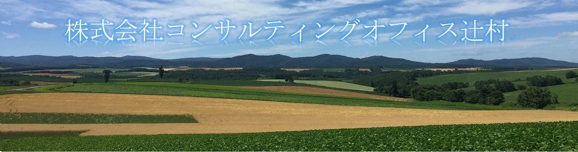 株式会社コンサルティングオフィス辻村
